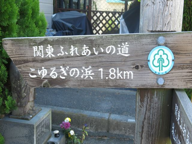 IMG_9588_R.JPG